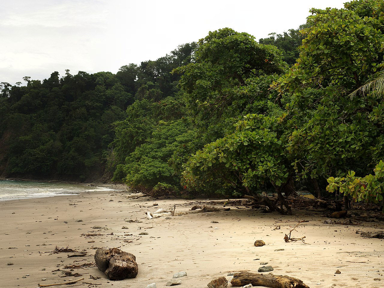 Cabo Blanco Absolute Nature Reserve, Costa Rica